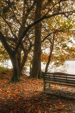 Preview iPhone wallpaper England, Cumbria, lake, leaves, trees, bench