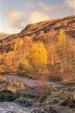 Preview iPhone wallpaper England, Cumbria, trees, mountains, creek, autumn