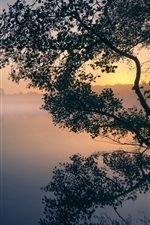 Preview iPhone wallpaper England, London, Thames, Pen Ponds, trees, fog, morning