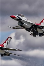 Preview iPhone wallpaper F-16 aircraft, Thunderbirds, flight, sky