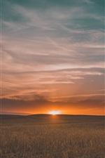 Preview iPhone wallpaper Fields, sunset, grass, sky, clouds