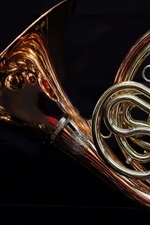 Preview iPhone wallpaper French horn, black background