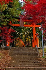 Preview iPhone wallpaper Fujiyoshida, gate, ladder, trees, autumn, Japan