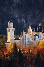 Preview iPhone wallpaper Germany, castle, forest, autumn, trees, sunshine