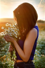 Preview iPhone wallpaper Girl and chamomile, flowers field, sunset