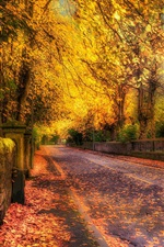 Preview iPhone wallpaper Gold autumn, road, trees, yellow leaves, HDR style