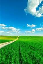 Preview iPhone wallpaper Green fields, path, blue sky, clouds, summer