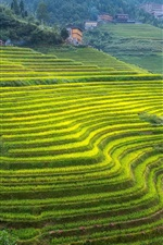 Preview iPhone wallpaper Guangxi, beautiful terraces, green, slope, house, China