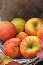 Preview iPhone wallpaper Harvest, ripe apples, basket, autumn