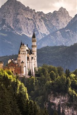 Preview iPhone wallpaper Hohenschwangau Castle, Alps, trees, Germany