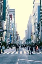 Japão, Tóquio, cena urbana, edifícios, rua, pessoas