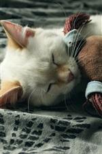 Preview iPhone wallpaper Kitten hug toy to sleeping