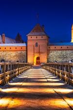 Preview iPhone wallpaper Lithuania, Trakai Castle, bridge, winter, snow, lights, night