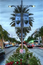 Preview iPhone wallpaper Los Angeles, Hollywood, shop, palm trees, HDR style, USA