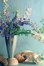 Lupines flowers, vase, shell, glare