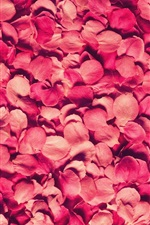Preview iPhone wallpaper Many pink rose petals background