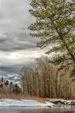 Preview iPhone wallpaper Montana, Missoula, USA, trees, winter, river, snow, clouds