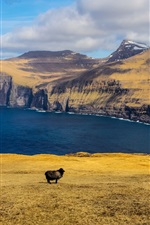 Preview iPhone wallpaper Mountains, sea, clouds, black sheep, islands