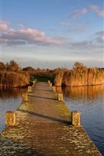 iPhone fondos de pantalla Países Bajos, muelle, puente, juncos, río, nubes, otoño
