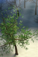 Preview iPhone wallpaper Only one green tree, snow, winter, creative picture