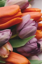 Preview iPhone wallpaper Orange and purple tulips, bouquet