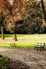 Park, trees, grass, bench, autumn, HDR style
