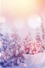Preview iPhone wallpaper Pine trees, thick snow, winter, sunshine, glare