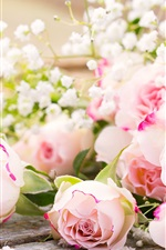 Preview iPhone wallpaper Pink roses, flowers