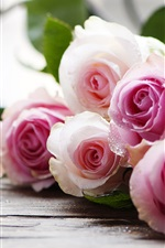 Preview iPhone wallpaper Pink roses, water drops, bouquet
