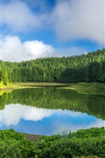 Preview iPhone wallpaper Portugal, Sao Miguel Island, trees, lake, water reflection