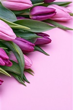 Preview iPhone wallpaper Purple tulips flowers and gifts