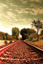 Preview iPhone wallpaper Railroad, grass, trees, clouds, sky, dusk