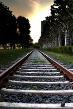 Preview iPhone wallpaper Railroad, trees, grass, sunset