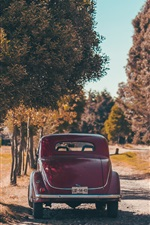 Preview iPhone wallpaper Red retro car rear view, man, trees, autumn