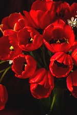 Preview iPhone wallpaper Red tulips, vase, darkness