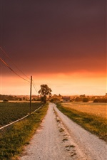 Preview iPhone wallpaper Road, fields, sunset, houses
