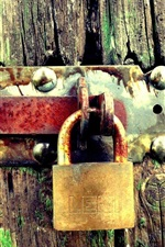 Rust lock, wood door