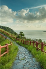 Preview iPhone wallpaper Sea, path, fence, grass, ships