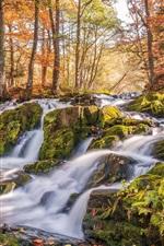 iPhone fondos de pantalla Selkefall, Harzgerode, Alemania, secuencia, bosque, árboles, otoño