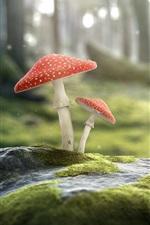 Preview iPhone wallpaper Snail and mushrooms, amanita