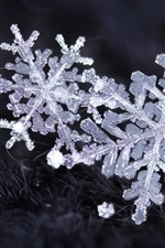Snowflakes, ice crystals, winter