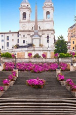 Spanish Steps, Rome, city, flowers, buildings, Italy