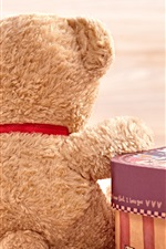 Preview iPhone wallpaper Teddy bear back view, love heart, gift