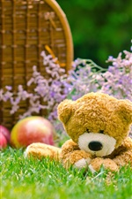 Preview iPhone wallpaper Teddy bear, grass, apples, basket