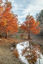iPhone fondos de pantalla Árboles, río, otoño