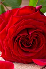 Preview iPhone wallpaper Valentine's Day, red roses, love heart
