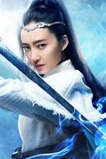 Wang Likun, Universo Marcial