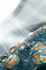 Gotas de água, luz solar, brilho