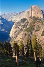 Preview iPhone wallpaper Yosemite National Park, USA, trees, mountains, nature landscape