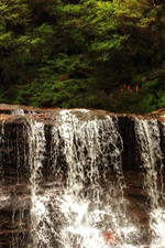 Preview iPhone wallpaper Australia, Wentworth Falls, waterfall, trees